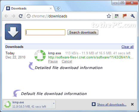 View file download details in chrome