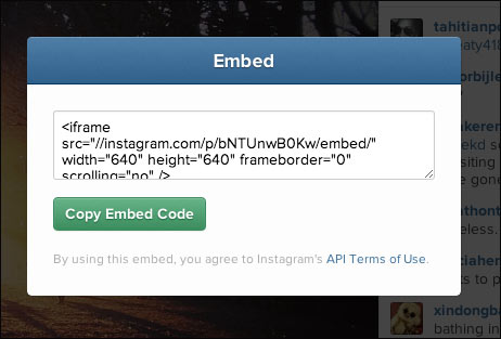 Embed code for instagram photos