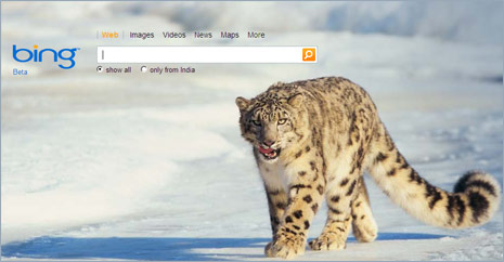 bing-search-homepage