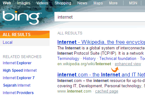 bing-wikipedia-enhanced-view-1