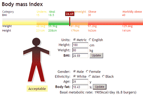 body-mass-index-calorie