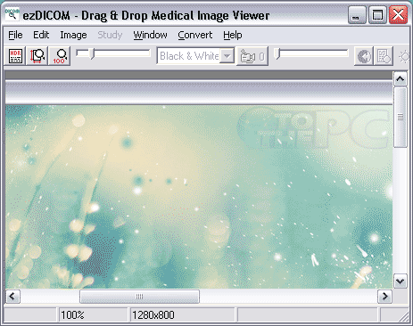 ezdicom-medical-viewer