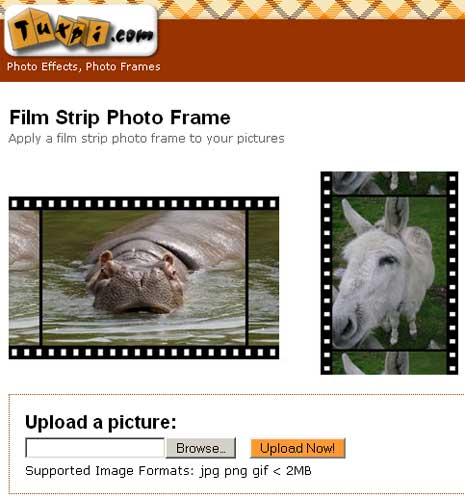 film-strip-photo-effect-online