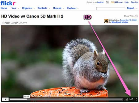 flickr-videos-pro-hd