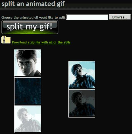 gif-ninja-static-image-extract