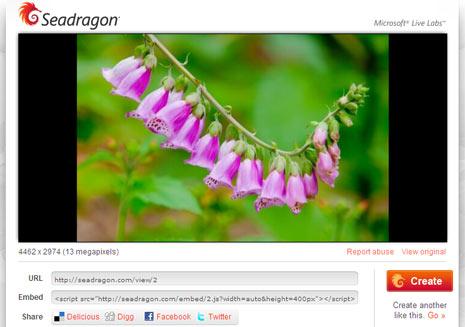 seadragon-hq-image-embed-service