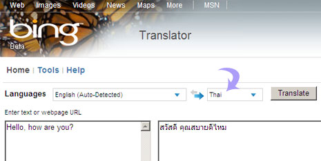 thai-language-on-bing-translator